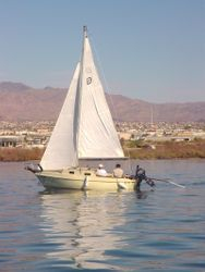 Sailboat in Race