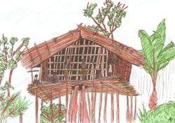 A Korowai Tree House