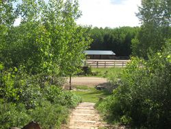 view from to horse barn