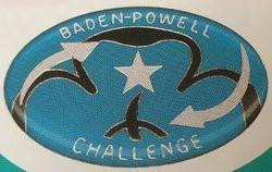2010s Baden-Powell Award