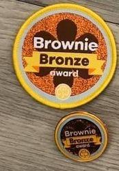 Brownie Bronze Award