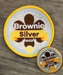 Brownie Silver Award