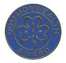 Guide Commonwealth Award 1980s to date