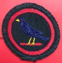 Blackbird Patrol Badge (woven)