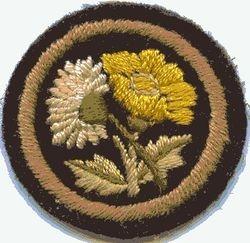Buttercup and Daisy Patrol Badge (felt)