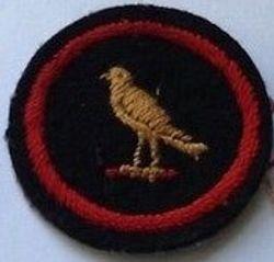 Canary Patrol Badge (felt)