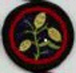 Honesty Patrol Badge (felt)
