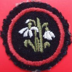 Snowdrop Patrol Badge (felt)