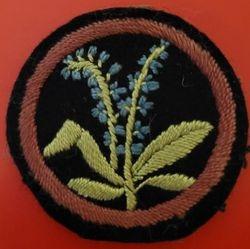 Speedwell Patrol Badge (woven)