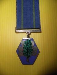 Oak Leaf Award