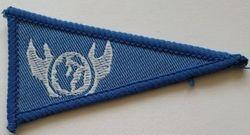 International Patrol Interest Pennant