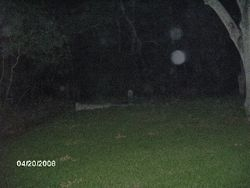 Double orb in cemetary