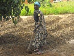 Working in People's gardens to feed her 9 grandchildren.