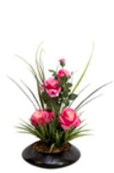 SC Si8ngle Rose assortment