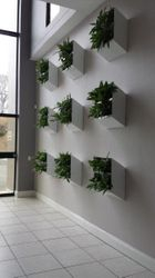 Wall Atrium Planter Boxes