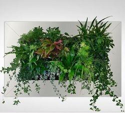 Living Green Wall Box Mounted
