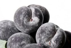 Frosted Plum