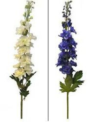 Delphinium Spray