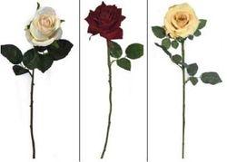 Rose Bud, Velvet & Olivia