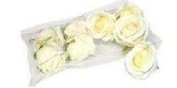 Rose Heads White