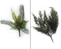 Small Bush Leaves