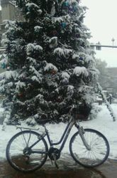 Bike Commuting in Snowy Weather