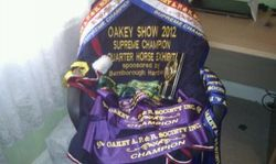 Oakey Show 2012, Results,
