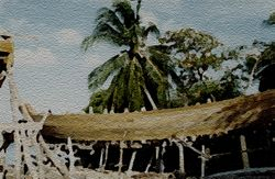 Carriacou (Boat 01)