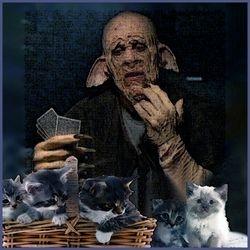 Clem Playing Kitten Poker