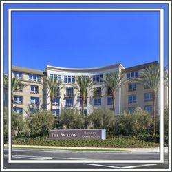 The Avalon Luxury Apartments