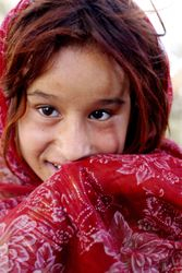 Nomad of Afghanistan