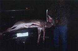 Heath Gilliland & his doe taken 10/17/08