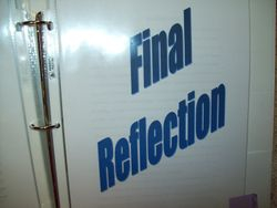 Final Reflection (What you learned)