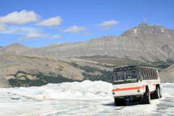 Columbian Ice Field Tour