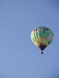 Jungle Balloon