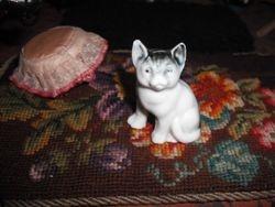 pretty china cat.