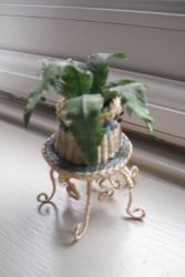 Another plant in a hand made stand.