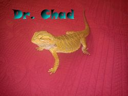 Dr. Chad on my parents bed