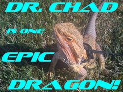 Dr. Chad is one EPIC dragon