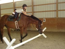 Hannah and Bella pretending to be a grand prix jumping pair!