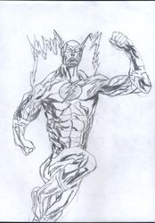 "Silver Age Flash,""Barry Allen."""
