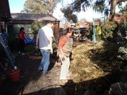Front Yard - mulch