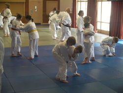Junior session with Sensei Temperton 5th Dan
