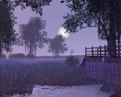 bog view - Supernatural