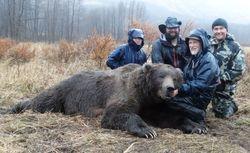 Dan Osborne's fall Kodiak Brown Bear