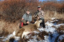 Tim Wise 2014 fall Black Tail Buck