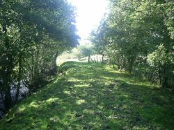 Sweet Afton Walk