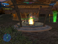 Campfire photo!