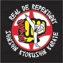 New Shinshin Kyokushin patch