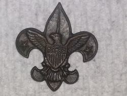 Boy scout Tenderfoot rank